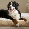 Plush Pillow Pet Bed