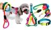 Rainbow Pet Collar Harness Leash