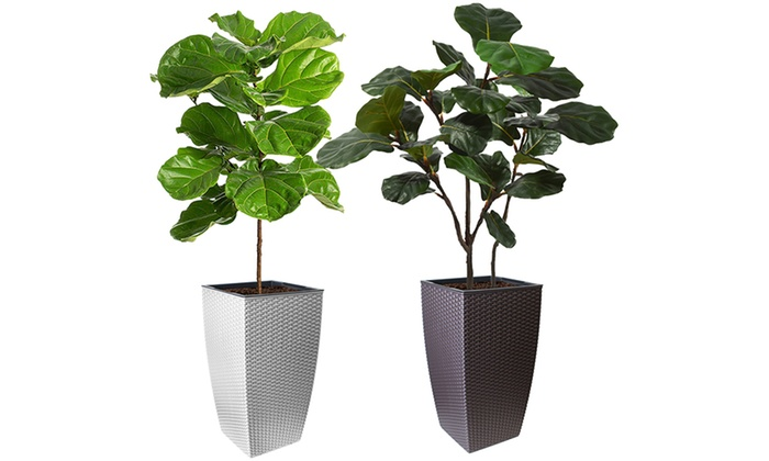Up to Four Self-Watering Rattan-Effect Planters (£16.98)