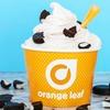 Up to 40% Off Frozen Yogurt at Orange Leaf