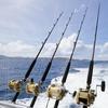 50% Off Fishing / Boating