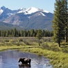 Mountain Condos in Colorado's Winter Park