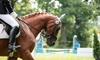 Up to 50% Off Horseback Riding Lessons at Hays Riding Lessons