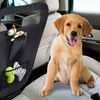 Auto Pet Barrier with Pockets and Organizer