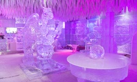 Enjoy the unique sub zero experience for Child or Adult with Drink and Cake at Chill out Ice Lounge