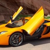 Up to 50% Off One-Hour Exotic Rally Drive for Two