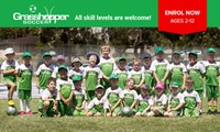 Two Kids Soccer Training Sessions for One Child ($6) with Grasshopper Soccer, Nationwide (Up to $41.25 Value)