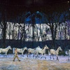 Cavalia: Odysseo — Up to 36% Off Horse Show