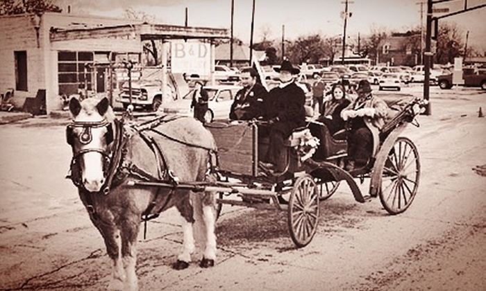 Brazos Carriage Company - Central Dallas: $150 for a Horse-Drawn Carriage Ride Through Highland Park for Up to 12 from Brazos Carriage Company ($300 Value)