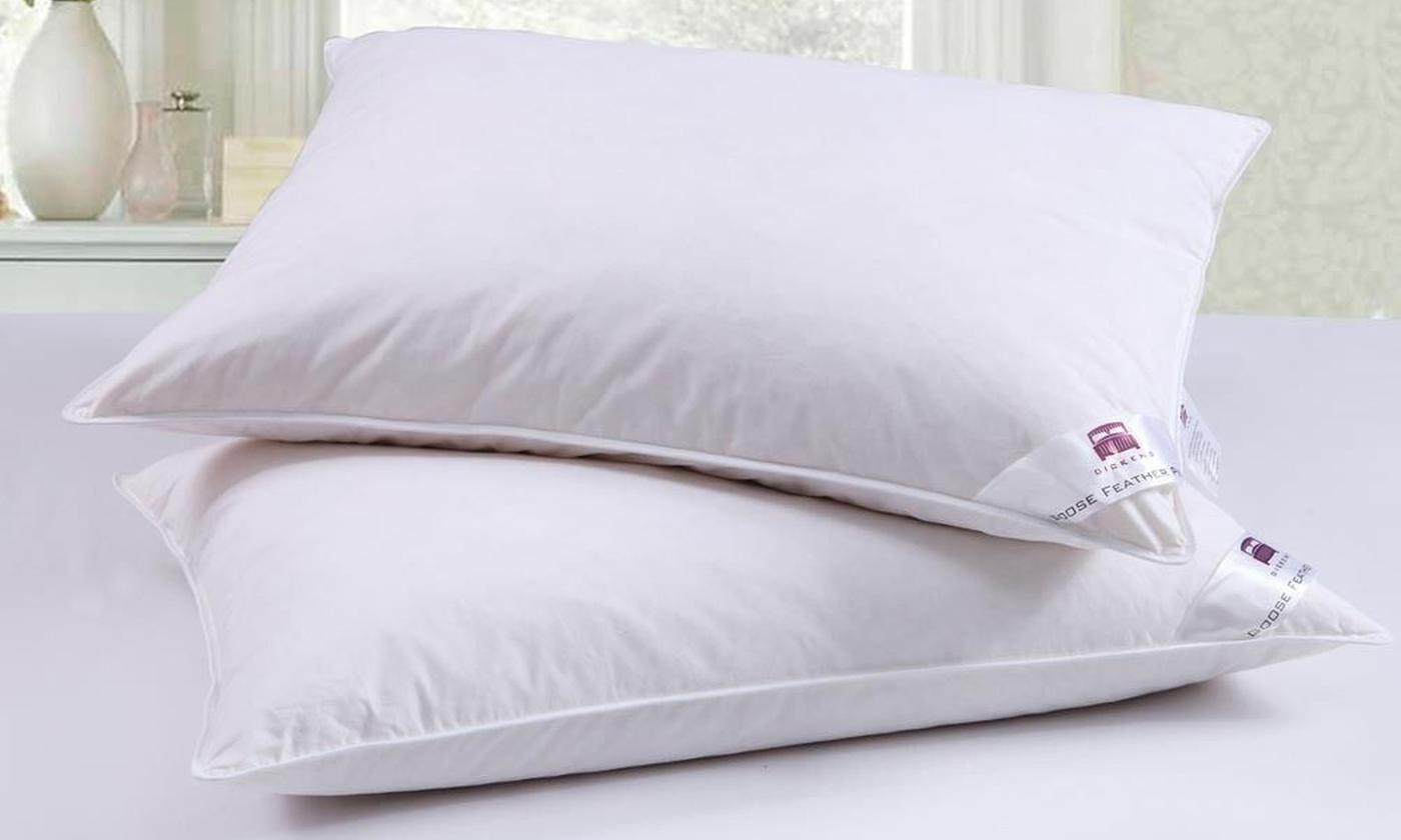 Two or Four Goose Feather and Down Pillows from £10.99 (78% OFF)