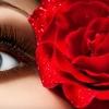 Up to 66% Off Eyelash Extensions at Paloosh Salon