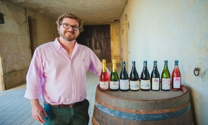 Château du Petit Thouars: Formule découverte épicurienne et 1 bouteille de vin chacun pour 2 personnes à 29,90 € au Château du Petit Thouars