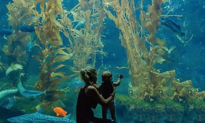 scripps aquarium san diego coupons