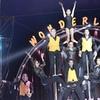 Entrada al Gran Circo Wonderland