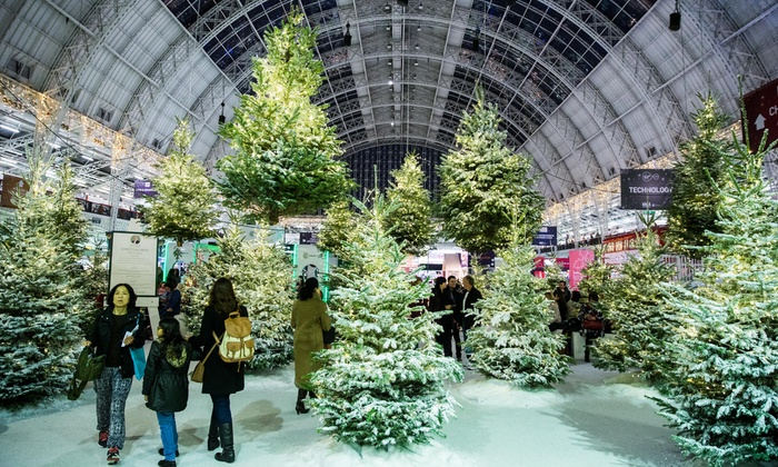 Ideal Home Show at Christmas, 22-26 November, London Olympia(Up to 53% Off)