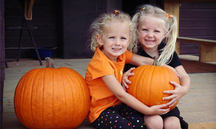 Macdonald Ranch - Scottsdale: Pumpkin Festival for Two, Four, or Six at Macdonald Ranch (45% Off)