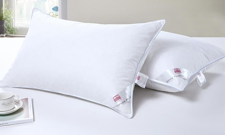 Two Dickens Goose Feather Silver-Piped Pillows