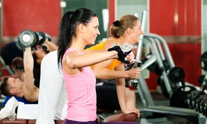 Fast Fit 360: Four or Eight Semi-Private Personal-Training Sessions at Fast Fit 360 (Up to 66% Off)