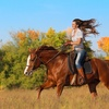 10% Off First Time Adult Horseback Riding Lessons