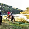 Up to 31% Off Horseback Trail Ride at Brazos Bluffs Ranch