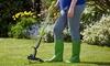 Garden Weed Puller