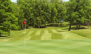 Country Meadows Golf Resort: 18 Holes of Golf for Two or Four Including Cart Rental and Lunch at Country Meadows Golf Resort (Up to 54% Off)