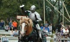 Up to 64% Off Admission to Canterbury Renaissance Festival
