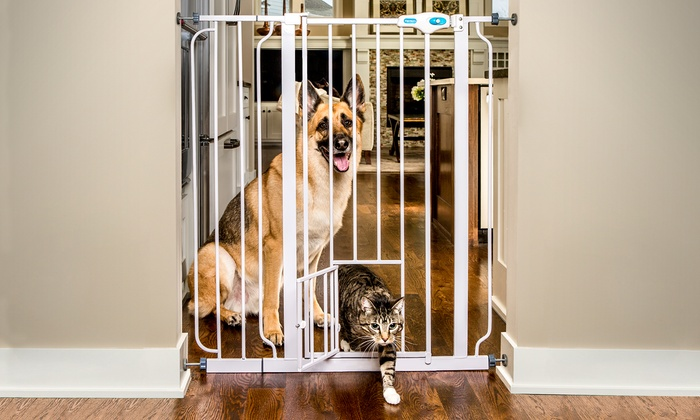 Carlson Pet Gate With Small Pet Door: Carlson Pet Gate With Small Pet Door  ...