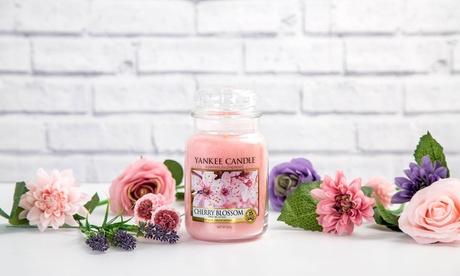 Hasta 4 velas aromáticas en jarra Yankee Candle