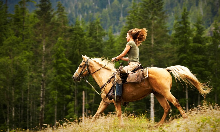 Sierra Nevada Adventures / Quincy Stables - Quincy: Half-Day Trail Ride or Overnight Pack Trip from Sierra Nevada Adventures / Quincy Stables (Up to 50% Off)