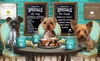 Wags & Whiskers Canine Cafe - Stockton-on-Tees: Lunch for Two or Four People and Dogs at Wags & Whiskers Canine Cafe