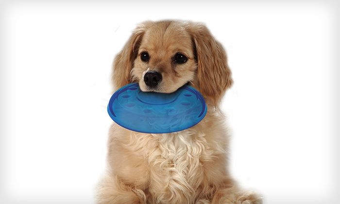 Petstages Orka Dog Toys: Petstages Orka Flyer for Small or Large Dogs (Up to Half Off). Free Returns.