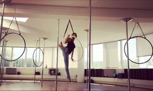 Pole Dance Antibes: 1 ou 2 cours d'1h30 d'initiation au cerceau aérien dès 15 € chez Pole Dance Antibes