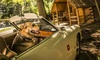 KOA Campground Williamsburg - KOA Campground Williamsburg: Three-Night Stay for Up to Four in a Classic Cabin or a Yurt at KOA Campground Williamsburg (Up to 42% Off)
