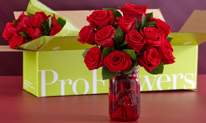 valentine's day flowers  proflowers  groupon, Beautiful flower