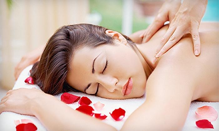 Citrus Spa & Salon Aveda - Coolidge Corner: 60-Minute Massage, 60-Minute Facial, or Choice of Bikini or Brazilian Wax at Citrus Spa & Salon Aveda (Up to 57% Off)