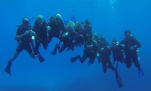 Dive & Travel Center NaLofoty.pl: Kurs nurkowania Discover Scuba Diving i więcej od 79,99 zł z firmą Dive & Travel Center NaLofoty.pl