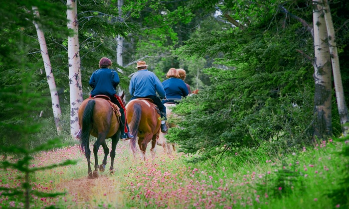 Equine Blvd - Agawam Town: $85 for a Scenic Horseback Trail Ride for Two at Equine Blvd ($200 Value)