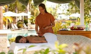 Up to 55% Off Spa Packages at The Spa at Hilton Orlando