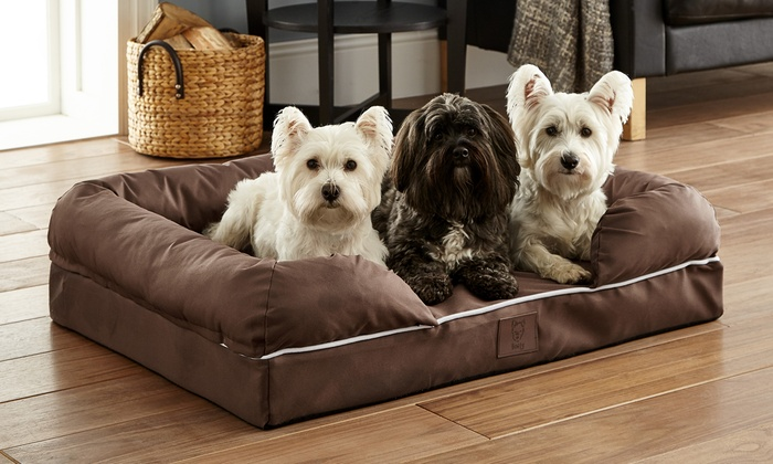 Bunty Cosy Couch Mattress Dog Bed from £19.99