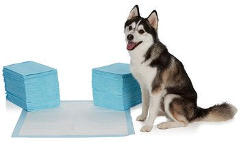 EZ-PET Heavy-Duty Training Pads (100-, 200-, 300-, 400-, or 600-Pack)
