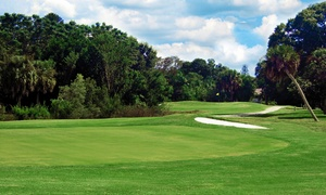 The Palms Golf Club at Forest Lakes: 18-Hole Round for Two or Four Plus Range Balls and Drinks at The Palms Golf Club at Forest Lakes (Up to 67% Off)
