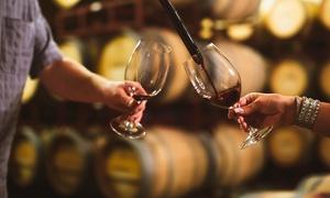 Ferienresidenz - Weingut Schlossmühle Dr Höfer: 2,5 Std. Erlebnis-Weinprobe für 2 oder 4 Pers. bei Ferienresidenz - Weingut Schlossmühle Dr Höfer (bis zu 51% sparen*)