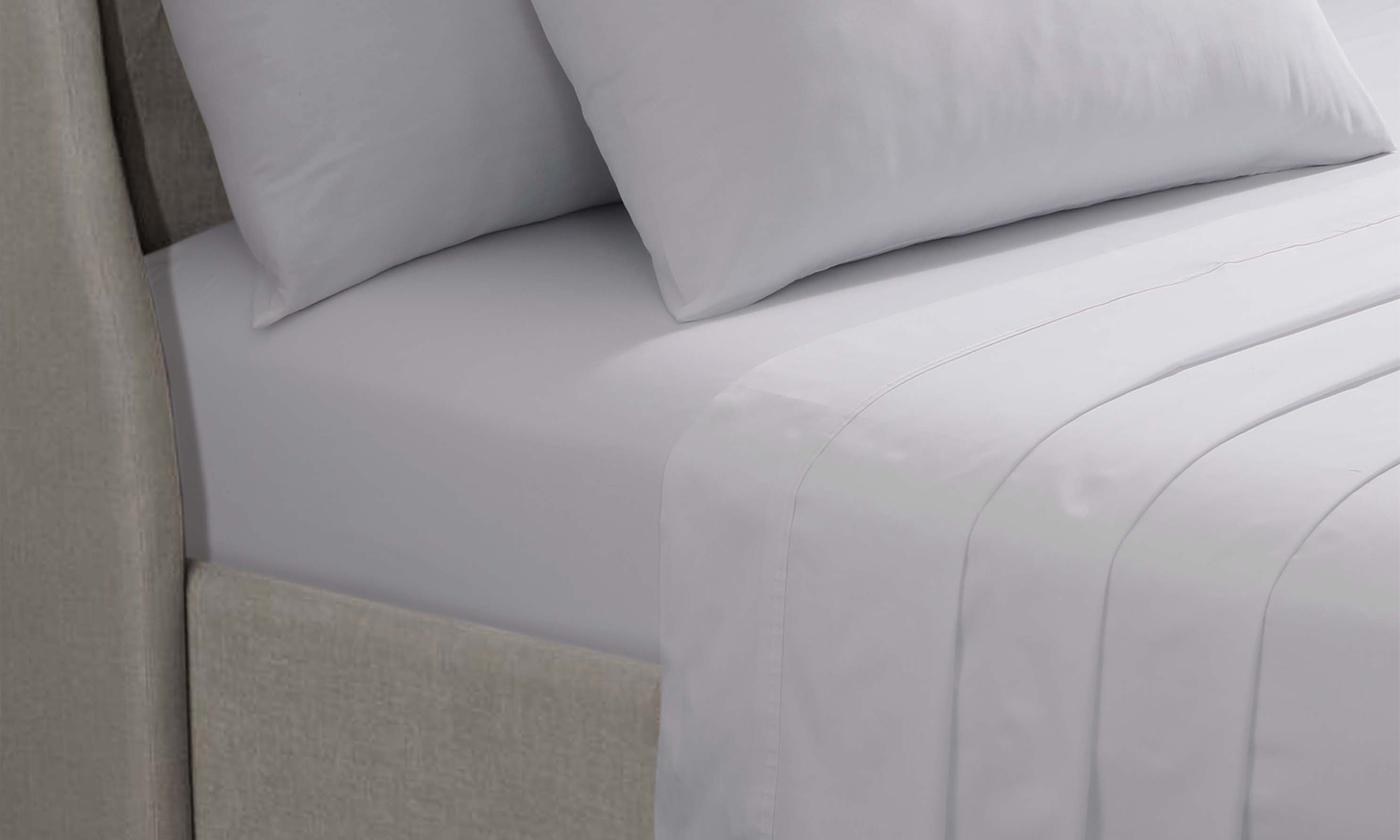 Pieridae 200TC Egyptian Cotton Extra Deep Fitted Sheet or Two-Pack of Pillowcase