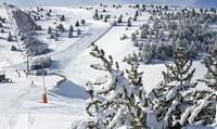 Forfait de 1 día de esquí y menú o alquiler de material para niño, junior o adulto desde 36,40€ en La Molina, 7 opciones