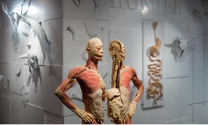 Up to 36% Off Admission Tickets to REAL BODIES at Bally's at REAL BODIES at Bally's, plus 6.0% Cash Back from Ebates.