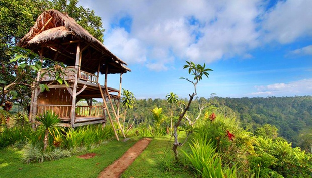 Bali: 4* Stay in Jungles of Ubud 7