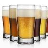 Pilsner 9 Oz. Beer Glass Set (6-Piece)