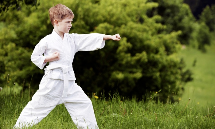 Karate Zone - Parkland: One Month of Martial-Arts Classes for One or Two at Karate Zone (Up to 75% Off)