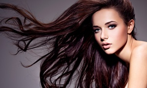 Up to 50% Off Blowouts at Salon D. Renee at Salon D. Renee, plus 6.0% Cash Back from Ebates.